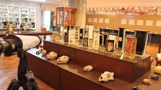 Espaço também conta com o vasto acervo do Laboratório de Ciências Leopoldo Cathoud